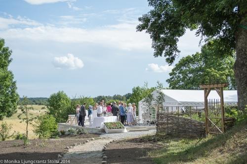 Utomhusvy över tältbröllop